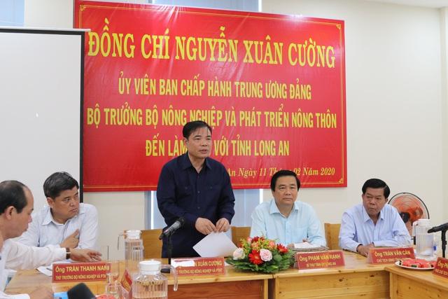 Xuất khẩu thanh long đình trệ, Bộ trưởng Nông nghiệp về địa phương giải cứu - 5