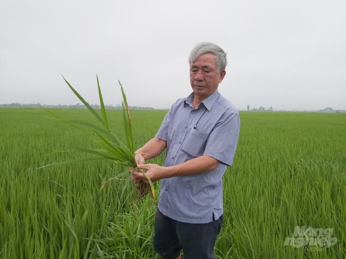 Ông Phan Đăng Hà, một hộ dân tại xã Hưng Nhân, huyện Hưng Nguyên lo lắng trước tình hình dịch bệnh. Ảnh: Việt Khánh.